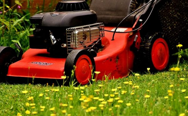 How to Drain Gas from a Lawn Mower