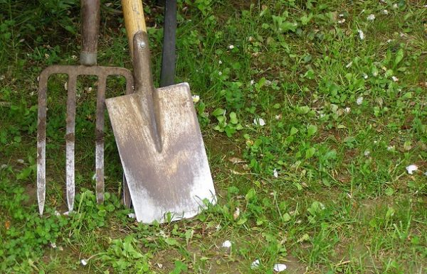 How to Remove Grass with a Shovel